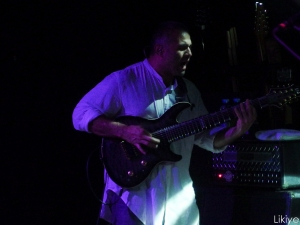 Concert animals as leaders-35